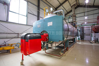 40 ton liquefied petroleum gas boiler in south korea
