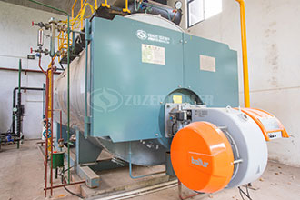 fired biogas boiler, fired biogas boiler suppliers and