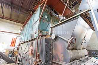 condensing natural gas steam boilers in food industry