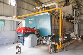 condensing steam boilers in food industry