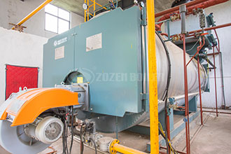 distributor 2t natural gas fired boiler commercial brunei