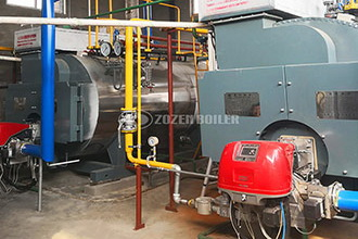 industrial gas boiler supplier, small gas boiler supplier