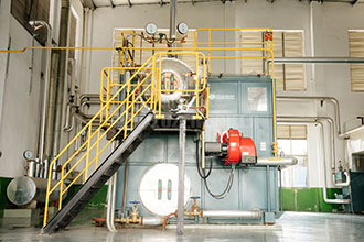 china 2ton industrial oil and gas fired steam boiler