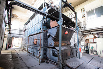 lpg steam boiler for food industry