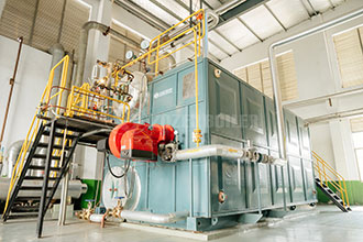 heavy oil fired horizontal steam boilers in europe -