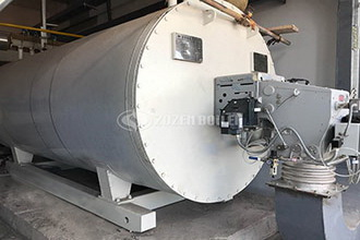 china diesel steam boiler, china diesel steam boiler