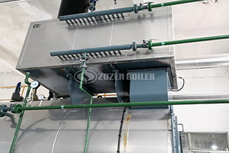 gas steam boilers for food industry